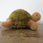 3. Skildpadde set fra siden